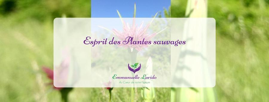 Programme Esprit des plantes sauvages, Energétique et EFT par Emmanuelle Lorido
